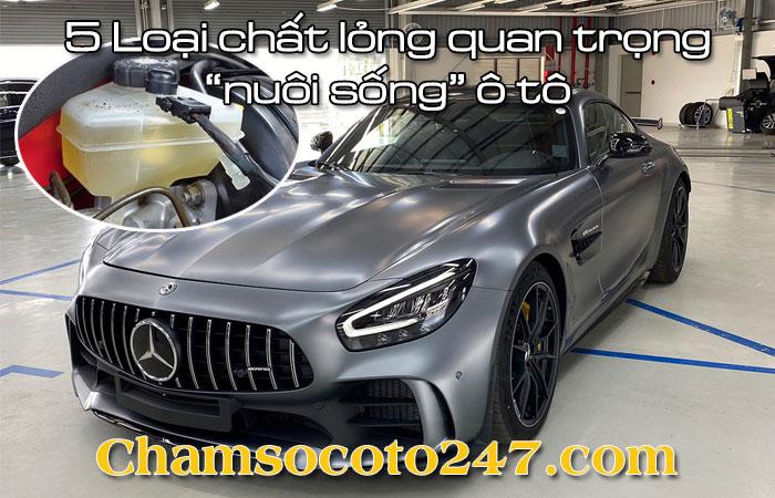 5-loai-chat-long-quan-trong-nuoi-song-o-to-1